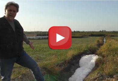 VIDEO| Schiuma dal depuratore di Cerignola. Il reportage di Avvenire